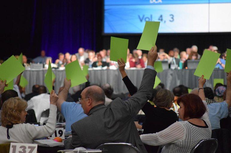 Voting, deelgates arms raised